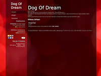 Canil Dog Of Dream