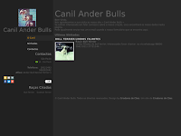 Canil Canil Ander bulls